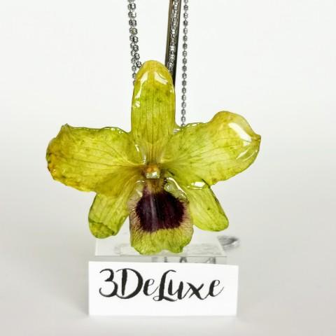 Жълто-зелена Орхидея 3DeLuxe