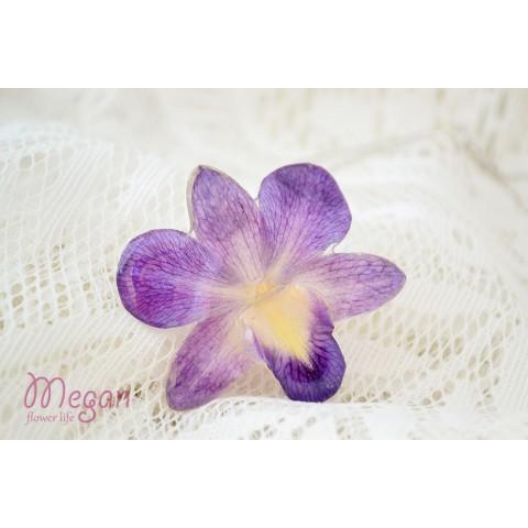 Триизмерна Орхидея